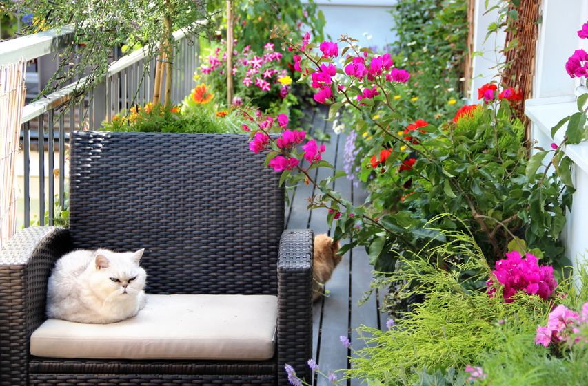Tips For Outdoor Patio or Balcony