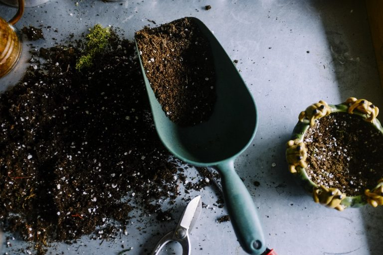 How To Select The Soil For Indoor Garden?
