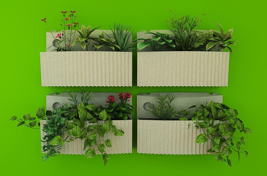 Grow herbs in the shade
