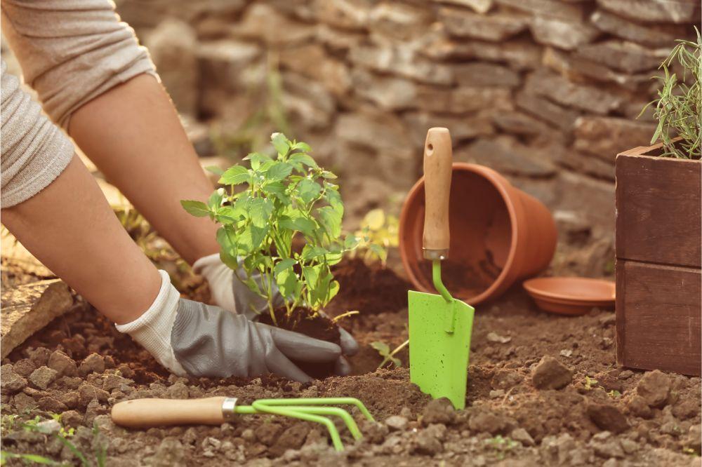 Best Gardening Essential Tools